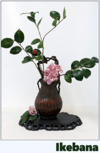 Ikebana, styl shokaseika Źródło: M. Martin Vicente via Foter.com / CC BY