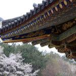 Kolorowe budowle, czyli tradycyjne malarstwo tanch'ong
